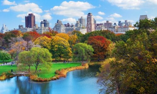 Nyu York şəhərində Mərkəzi Park