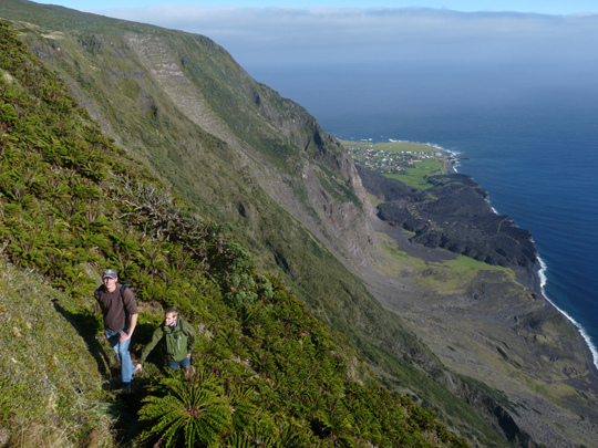 Tristan da Cunha adası