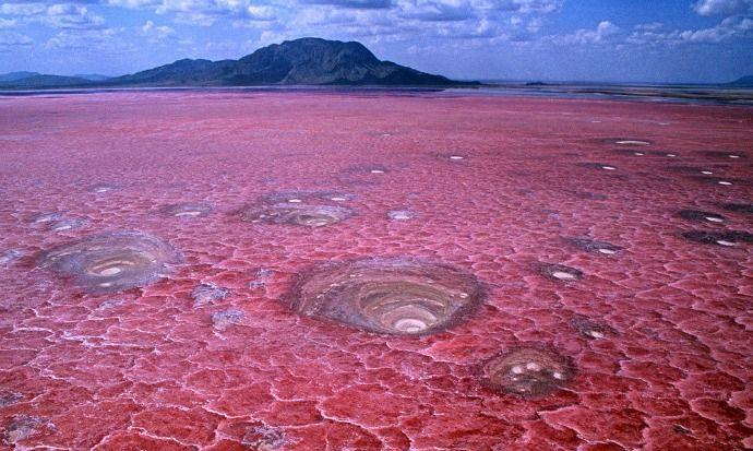 Natron Gölü-Tanzaniya