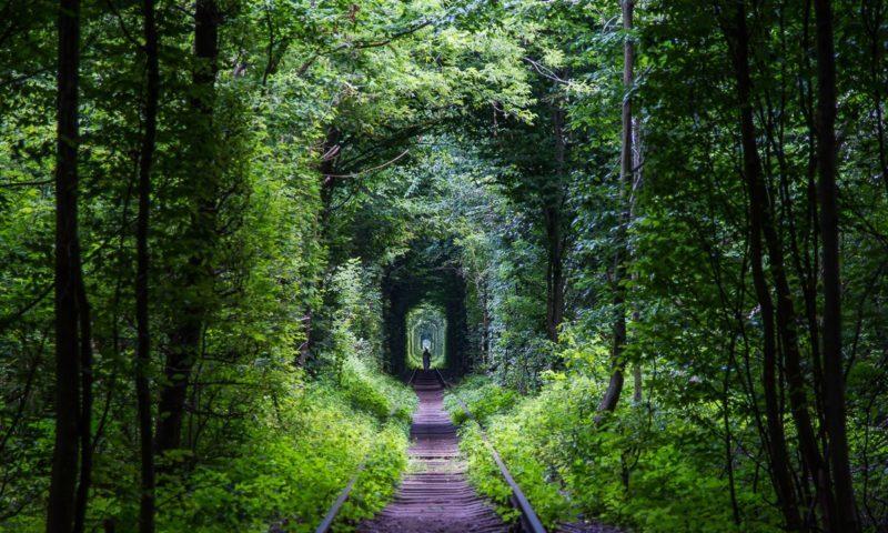 Sevgi tuneli-ukrayna