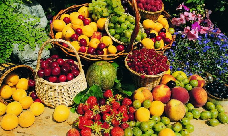 Ən faydalı yay meyvələri