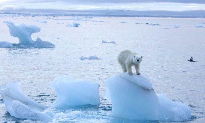 Arktikada ən Qalin Buz Surətlə əriyir Topic Az